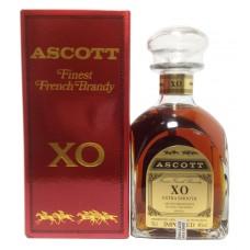 Ascott XO