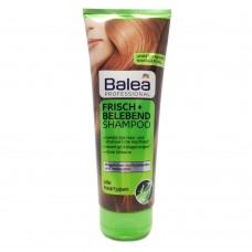 Balea Professional Frisch und Belebend Shampoo