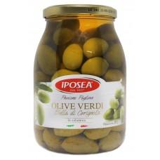 Iposea Olive Verdi